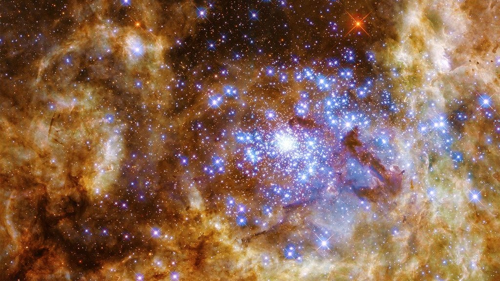Stars Without Number